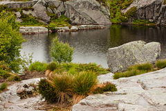 Lago na chuva em Noruega Imagens de Stock