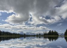 Lago na floresta Imagens de Stock Royalty Free
