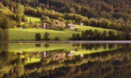 Lago na floresta Foto de Stock