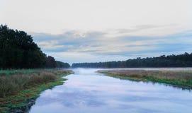 Lago na floresta imagens de stock