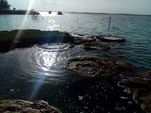 Lago na manhã Imagens de Stock Royalty Free
