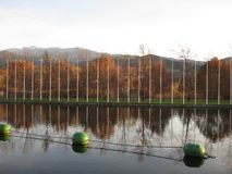 Lago na queda com as árvores refletidas na água fotos de stock royalty free