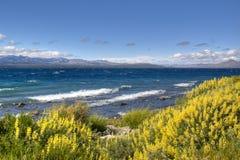 Lago Nahuel Huapi in Bariloche, Argentina Immagini Stock Libere da Diritti