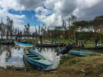 Lago Naivasha con los árboles muertos del acacia Foto de archivo
