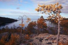 lago nas montanhas com a floresta ao longo da costa Imagens de Stock