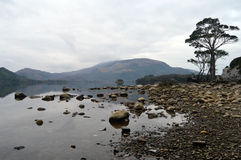 Lago natural Foto de archivo