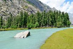 Lago natural Imagem de Stock Royalty Free