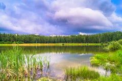 Lago natural del bosque con pasatiempos públicos arenosos artificiales de la playa gratis Suburbio residencial de Moscú, distrito imágenes de archivo libres de regalías