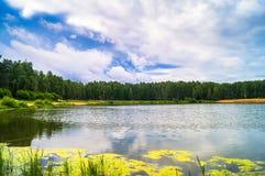 Lago natural del bosque con pasatiempos públicos arenosos artificiales de la playa gratis Suburbio residencial de Moscú, distrito foto de archivo