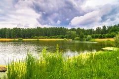 Lago natural del bosque con pasatiempos públicos arenosos artificiales de la playa gratis Suburbio residencial de Moscú, distrito imagenes de archivo
