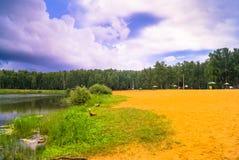 Lago natural del bosque con pasatiempos públicos arenosos artificiales de la playa gratis Suburbio residencial de Moscú, distrito Foto de archivo libre de regalías