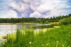 Lago natural del bosque con pasatiempos públicos arenosos artificiales de la playa gratis Suburbio residencial de Moscú, distrito Fotografía de archivo libre de regalías