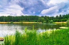 Lago natural del bosque con pasatiempos públicos arenosos artificiales de la playa gratis Suburbio residencial de Moscú, distrito Fotos de archivo
