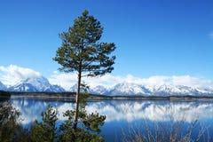 Lago natural grande do moutain de Teton fotos de stock