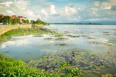 Lago naturale a Phayao in Tailandia fotografia stock libera da diritti