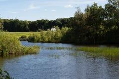Lago naturale vicino a Billud, Danimarca Fotografia Stock Libera da Diritti