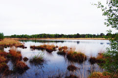 Lago nature Foto de Stock Royalty Free
