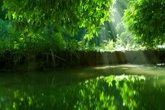 Lago nature Imagen de archivo libre de regalías