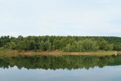 Lago nature con la reflexión verde de los árboles Fotos de archivo