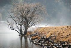 Lago nebbioso Navarone Fotografie Stock Libere da Diritti