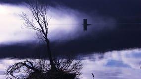 Lago nebbioso strano e lugubre Fotografia Stock Libera da Diritti