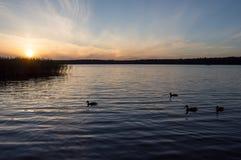 Lago Necko, Polônia, Masuria, podlasie Imagem de Stock Royalty Free