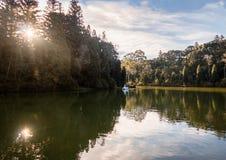 Lago Negro Black Lake with Swan Pedal Boats - Gramado, Rio Grande do Sul, Brazil. Lago Negro Black Lake with Swan Pedal Boats in Gramado, Rio Grande do Sul stock image