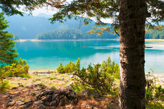 Lago negro en Durmitor - Montenegro Fotografía de archivo libre de regalías