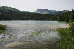 Lago negro en parque nacional fotos de archivo libres de regalías