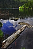 Lago negro - jezero de Cerne Foto de archivo libre de regalías