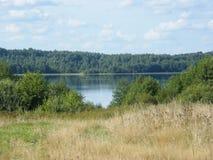 Lago nel campo di estate Fotografie Stock Libere da Diritti