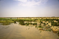 Lago nel deserto di Sahara Immagini Stock