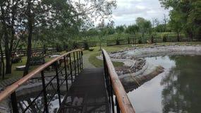 Lago nel giardino Fotografie Stock