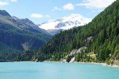 Lago nel Ortler-Gruppe Immagini Stock Libere da Diritti