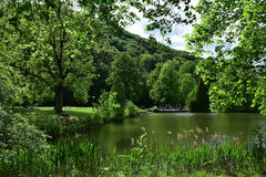 Lago nel parco Fotografie Stock Libere da Diritti