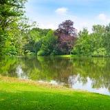 Lago nel parco di estate Immagini Stock