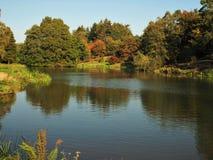 Lago nell'arboreto di Yorkshire, Inghilterra immagine stock