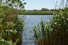 Lago nell'entroterra Fotografia Stock