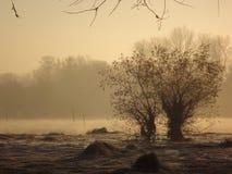 Lago nell'inverno Immagini Stock