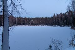 Lago nell'inverno della foresta neve Ghiaccio fotografia stock