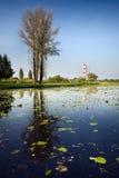 Lago nella città Fotografia Stock Libera da Diritti