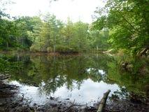 Lago nella contea di Pike, PA Fotografia Stock Libera da Diritti