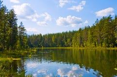 Lago nella foresta fotografie stock