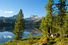 Lago nella foresta Fotografie Stock Libere da Diritti