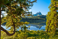 Lago nella foresta Immagini Stock