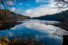 Lago nella foresta Fotografia Stock Libera da Diritti