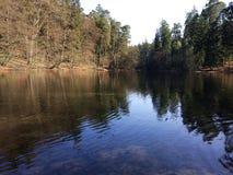 Lago nella foresta Immagine Stock Libera da Diritti