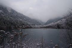 Lago nella foresta di inverno immagine stock