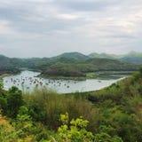 Lago nella giungla Immagini Stock Libere da Diritti