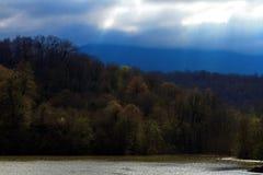 Lago nella giungla Fotografia Stock Libera da Diritti